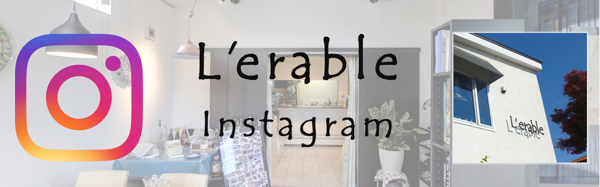 lerable_instagram